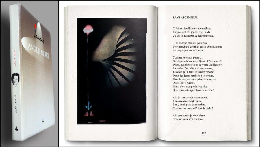 Angle mort, recueil de poèmes de Jean Janoir.